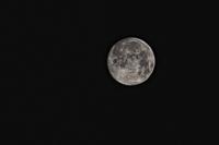 Bild für Kategorie Mondkalender 2019